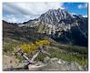 Mt_Stuart_SFace_s (K Swanson) Tags: mtstuart longspass wenatcheenationalforest washington