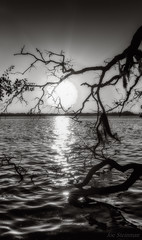 Unspoken Feelings (JDS Fine Art & Fashion Photography) Tags: beach art dreamy inspirational sunrise glitter ocean sun