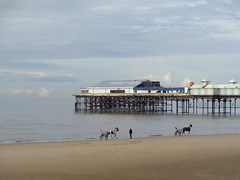 Ponies a Pier and a Person at Blackpool (j.a.sanderson) Tags: ponies pier person blackpool a pair traps gallop northwards by sea edge beach the central sits background mans quiet reflective moment is disturbed equine interruption ponyandtrap horseandtrap horse horses pony
