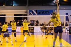 _MG_1858 (Pierre-Emmanuel Jolivot) Tags: nantes vbn pej volley mulhouse