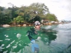 GOPR5937 (ambrogi_taubate) Tags: naturezaselvagem marinha mergulhando ubatuba sp brasil naturezamarinha fantstica apneia 10m setembro primavera 2016