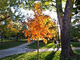 Photo - Samuel Forsyth- CU Boulder #2