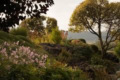 Jardin des Ragots (Gisou68Fr) Tags: jardindesragots jardinpriv privategarden besanon france doubs bourgognefranchecomt arbres trees fleurs flowers jardin garden