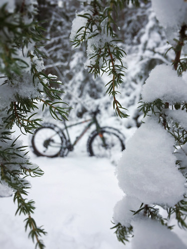 Snow Fatbiking 1