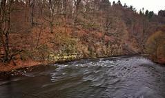 Wupper (michel1276) Tags: wupper fluss wasser water river outdoor landschaft landscape wuppertal nrw deutschland germany canon 24105l