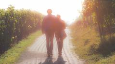 strolling along the vineyard on a beautiful sunny fall day (greg luengen) Tags: people couple walking strolling nature natur spazieren sunny sun fall autumn herbst vineyard weinberg reben sony sonyalpha nex