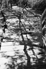 San Isidro, september 2016. (florencia tiembla) Tags: 35mm 35mmfilm filmphotography ishootfilm filmisnotdead kodaktrix400 nikonfm10 blackandwhite blackandwhitefilm