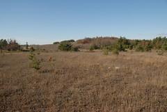 DSG_7395 (Greying_Geezer) Tags: 2016 hazelbird ncc natureconservancyofcanada hamiltontownship ort hiking naturereserves