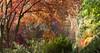 England (richard.mcmanus.) Tags: england trees autumn winkwortharboretum surrey mcmanus nature leaves landscape nationaltrust richardmcmanus