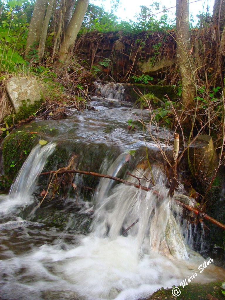 Águas Frias (Chaves) - ... Corre a água, em louca correria, pelo ribeiro ...