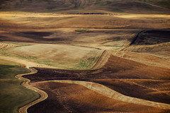 Palouse Abstract (Pedalhead'71) Tags: steptoe washington palouse abstract garfield unitedstates us