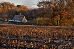 10,000 passes (PentlandPirate of the North) Tags: siddington cheshire thatched cottage corn stalks sunrise redesmere capesthorne