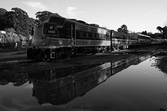 this is not the train to christmas town (nocklebeast) Tags: 1102 iowapacific santacruz nrd train trains ca usa notthetraintochristmastownl2013167 scphoto