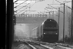 Vossloh Euro 4002 (92 87 0004 002-7 F-BRLL) avec rame Siemens  Desiro (fa5962) Tags: train verquigneul vossloh euro 4000 4002 euro4002 euro4000 vossloheuro4002 vossloheuro4000 92870004 desiro siemens siemensdesiro