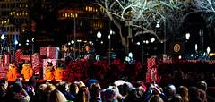 2016.12.01 Christmas Tree Lighting Ceremony, White House, Washington, DC USA 09317-2
