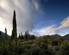 20160324-126F (m-klueber.de) Tags: 20160324126f 20160324 2016 mkbildkatalog griechenland ionische inseln kefalonia zypresse zypressen bergland wolken abend