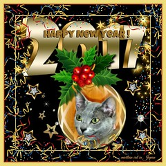 Marin & her Mama wish you a Happy New Year! (martian cat) Tags: russianblue newyears kitty kittycat cat pet ©martiancatinjapan allrightsreserved© happynewyear glücklichesneuesjahr omedettogozaimasu ハッピーニューイヤー 明けましておめでとうございます bonneannée felizañonuevo buonanno macro marin ©allrightsreserved martiancatinjapan© martiancatinjapan cards merrychristmas motivational joyeuxnoël fröhlichiwiehnacht kurisumasuomedeto feliznavidad メリークリスマス buonnatale motivationalposter inspirational ☺allrightsreserved allrightsreserved caption captioncollection christmas christmasmemories ☺martiancatinjapan martiancat creativity onblack girlkitten kitten