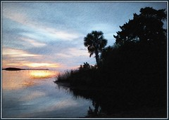 blue sunset - pencil (edenseekr) Tags: blue sunset bayport florida palms silhouettes gulfofmexico photopainting digitallypainted