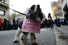 These Adorable Pets Are Supporting The Women's March (gilalodotcom) Tags: demonstration horizontal barcelona catalonia spain esp