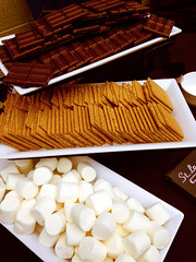 "St. Louis Snow Cones S'mores Bar • <a style=""font-size:0.8em;"" href=""http://www.flickr.com/photos/85572005@N00/14914826843/"" target=""_blank"">View on Flickr</a>"