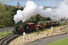 DSC00926a (nzsteam) Tags: train y railway goods springs western l passenger van guards freight dsa wagons carriages 223 motat 507 542