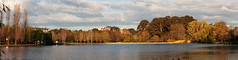 Nerang Pool Panoramic (Smiley Man with a Hat) Tags: macro pool 50mm spring pano sigma australia panoramic canberra floriade 2014 nerang nerangpool
