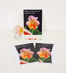 Friend Quote Postcard Set (Starzyia) Tags: flowers pansy stationery penpals letterwriting happymail madeit holidaygifts friendquote bestfriendgift starzyia postcardgiftset postcardproducts