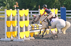 IMG_4632 (SJH Foto) Tags: show horse sports girl for shot action group teen teenager jumper tween favourite rider critique