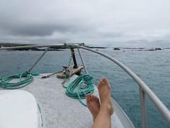 Galápagos - Isabela-146