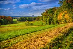"Herbstlandschaft • <a style=""font-size:0.8em;"" href=""http://www.flickr.com/photos/58574596@N06/15330302560/"" target=""_blank"">View on Flickr</a>"