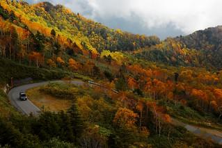 一路盤旋 Autumn  Hairpin turn ~豊野南志賀公園線 Mountain pass @ Shiga Kogen 志賀高原, 長野~