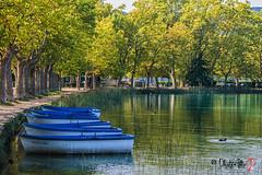 Estany de Banyoles 7823 (EXPLORE 20/10/2014) (FlixGP) Tags: lake lago catalonia catalunya llac banyoles estany sigma1770 pladelestany felix2510 nikond7100 flixgp