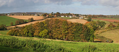 Autumn Trees at Eastbach (tony marfell) Tags: autumn trees panorama landscape eastbach