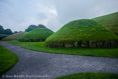 Satellite Tombs at Knowth, Co. Louth, IE (donberry37 (SF Bay Area)) Tags: new ireland tomb grange cairn louth newgrange 2014 passagetomb