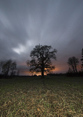 DSC_282 (anderssonrobin) Tags: autumn sky fall night nikon tokina d610 1116