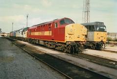 "Class 37's, 37057 ""Viking"", 37380, 37074, & 37710, & Class 31/1, 31142 (37190 ""Dalzell"") Tags: tractor london dutch brian viking heavyweight ped growler goyle ews class37 class373 orangeblack class31 31142 class377 37380 37710 triplegrey civilengineers maroongold loadhaul 37074 class311 trainloadfreight englishwelshscottishrailways class370 37057 mainlinefreight stratforddepot aircraftblue sbrea springsbranchrailenthusiastassociation"