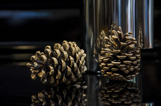 Coffee Pot and Pine Cones