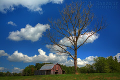 Rural America (J.L. Ramsaur Photography) Tags: sky nature clouds rural landscape outdoors photography photo nikon tennessee bluesky pic oldbuildings faded photograph thesouth hdr oldbuilding tinroof cumberlandplateau oldbarn ruralamerica 2014 whiteclouds beautifulsky photomatix putnamcounty deepbluesky cookevilletn bracketed skyabove middletennessee vintagebuilding ruraltennessee hdrphotomatix ruralview hdrimaging retrobuilding ruralbuilding ibeauty southernlandscape hdraddicted allskyandclouds d5200 vintagebarn ruralbarn structuresofthesouth southernphotography screamofthephotographer hdrvillage jlrphotography photographyforgod worldhdr nikond5200 hdrrighthererightnow engineerswithcameras hdrworlds god'sartwork nature'spaintbrush jlramsaurphotography cookevegas