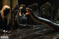 . (Ellie Boskett) Tags: snake harrypotter prisonerofazkaban voldemort gobletoffire malfoy halfbloodprince nagini philosophersstone orderofthephoenix darkarts chamberofsecrets warnerbrothersstudiotour wbstudiotour deathlyhallows malfoymanor