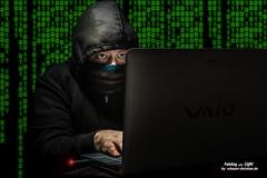 Der Hacker