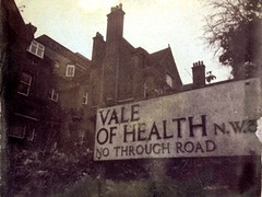 (Paula Pozzan) Tags: london print health tintype process toned alternative vandyke alternativeprocess digitalnegative altprocess valeof