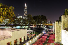 Long exposure : The Shard (_ACharles) Tags: city uk longexposure london tower thames night landscape boats photography lights long exposure colours britain trails poppy poppies shard lightroom