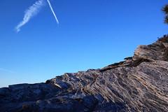 Hawksbill Mountain 2014-1017-232 (LostPineJim) Tags: autumn fall northcarolina linvillegorge pitchpine pinusrigida burkecounty hawksbillmountain
