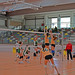 "CADU Voleibol 14/15 • <a style=""font-size:0.8em;"" href=""http://www.flickr.com/photos/95967098@N05/15624384759/"" target=""_blank"">View on Flickr</a>"