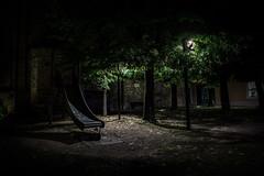 Lake Garda-291 (kris greenwell) Tags: trees italy playground night slide creepy lakegarda