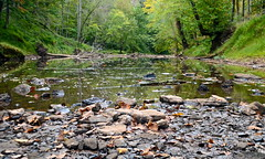 Hughes River (tim.perdue) Tags: park trees west nature water river virginia rocks state bend stones north fork wv cairo riverbed hughes harrisville
