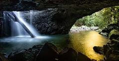 Inside, Looking Out (Kristin Repsher) Tags: waterfall nikon df australia falls naturalbridge queensland cave cavecreek springbrook southeastqueensland springbrooknationalpark cavecreekfalls