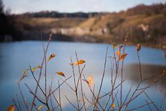 Autumn colors (Hkan Dahlstrm) Tags: lake se skne sweden sverige uncropped f40 2014 eriksdal stenbrott skneln sjbo canoneos5dmarkii kvarts sek ef2880mmf284lusm rddinge 4309112014133859