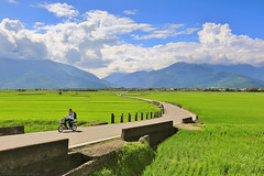 LOHAS (Singer ) Tags: road light shadow sky mountain tree green bicycle clouds composition canon iso100 snake taiwan valley sin