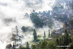 Misty - Duoyishu Hani village, Yunnan (Pic_Joy) Tags: china landscape scenery asia village terrace farm unescoworldheritagesite  yunnan ethnic  minority  hani     honghe duoyishu